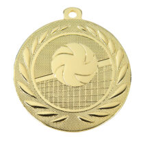 Medal Siatkówka